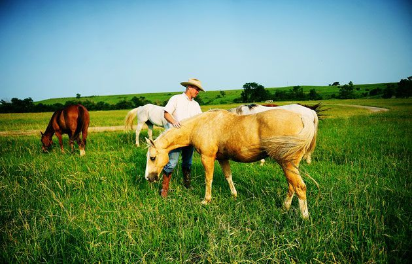 Mejor niñera en el rancho