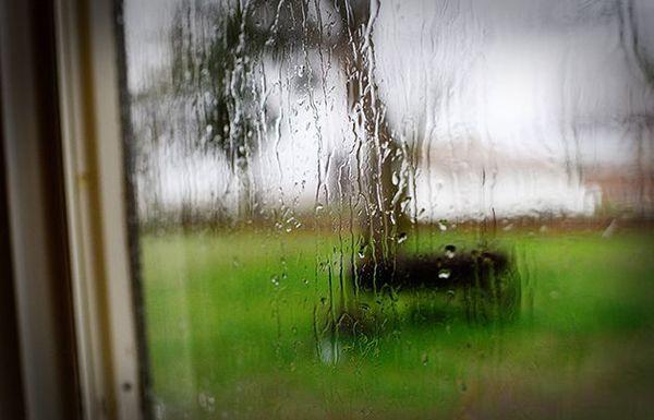 Cómo nos sentimos acerca de la lluvia