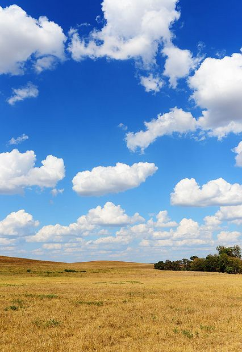 Fotos de Monday Morning Cloud