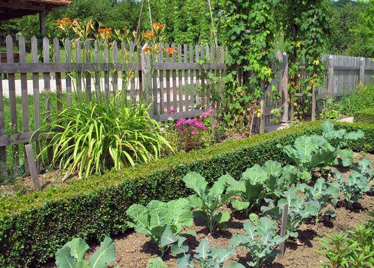 20 najlepších nápadov na záhradný plot pre akýkoľvek typ vonkajšieho priestoru